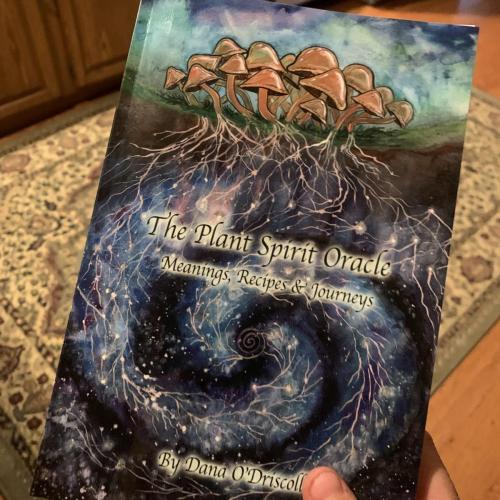Plant Spirit Oracle Book